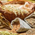 Как купить или продать сельскохозяйственную продукцию