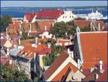 Сотрудничество полиции Польши и Прибалтийских стран